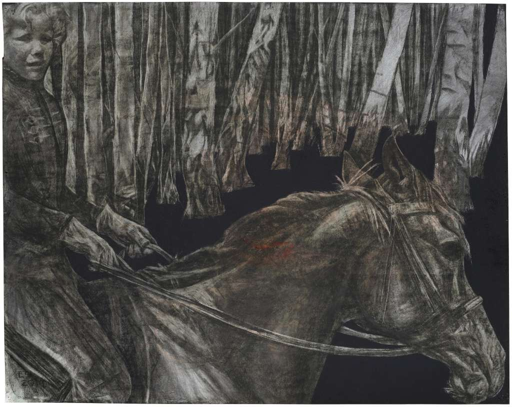 Silver Birches, Lipsko | Charcoal and Conté on Paper | Emma Sergeant