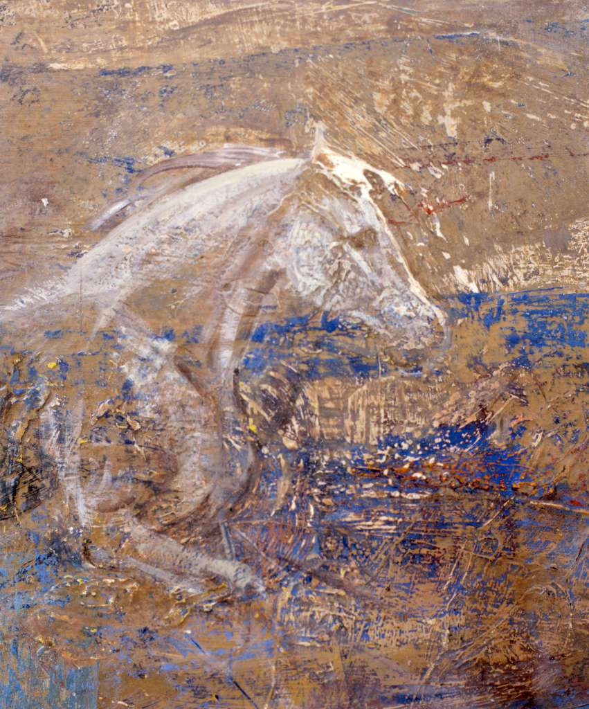 Gray horse in wood
